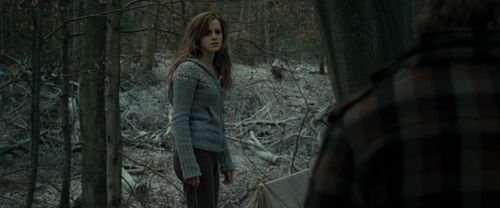 Hermione Granger Images Harry Potter And The Deathly