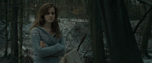 Hermione Granger wallpaper with a sitka spruce and an american white birch entitled Harry Potter And The Deathly Hallows Part 1 (BluRay)