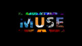 Muse cover wallpaper - muse wallpaper