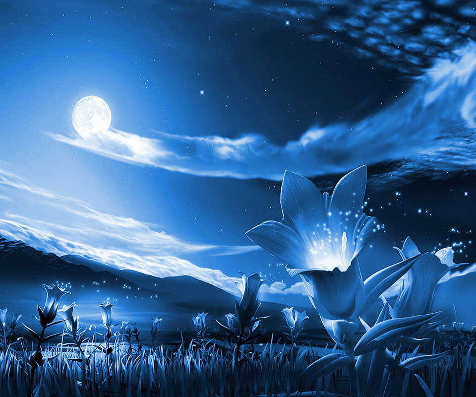 Beautiful Nature images Night HD wallpaper and background ...