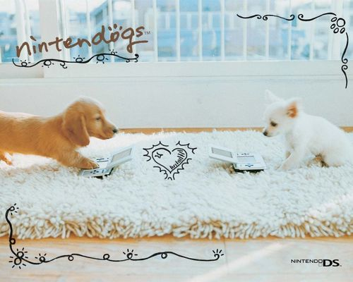 Nintendo wallpaper probably containing a golden retriever entitled Nintendogs