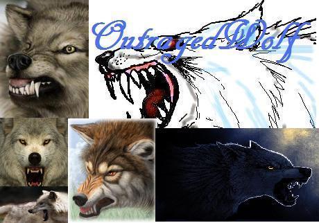 Outragedwolf