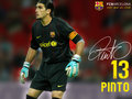 fc-barcelona - Pinto 2009/10 wallpaper
