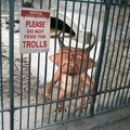 Remember....Don't Feed the Trolls! - fanpop photo