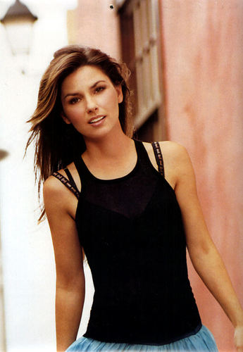 shania twain fondo de pantalla possibly with a chemise, a bustier, and tights titled Shania Twain