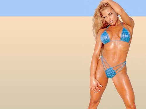 WWE Divas achtergrond containing a bikini called Trish <3 is sexy !!!