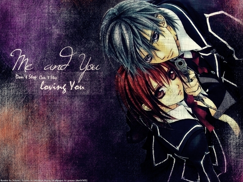 Vampire Knight wolpeyper with anime entitled Vampire Knight
