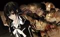 vampire-knight - Vampire Knight wallpaper