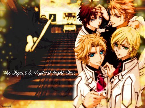 Vampire Knight karatasi la kupamba ukuta probably with anime titled Vampire Knight