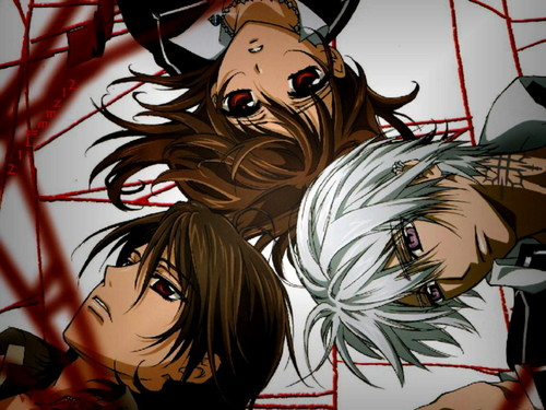 vampire knight wallpaper possibly with animê entitled Vampire Knight