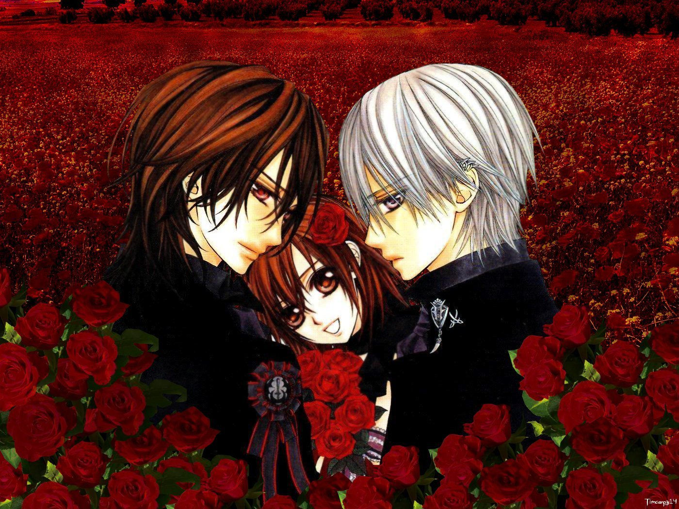 vampire knight wallpaper hd - photo #24