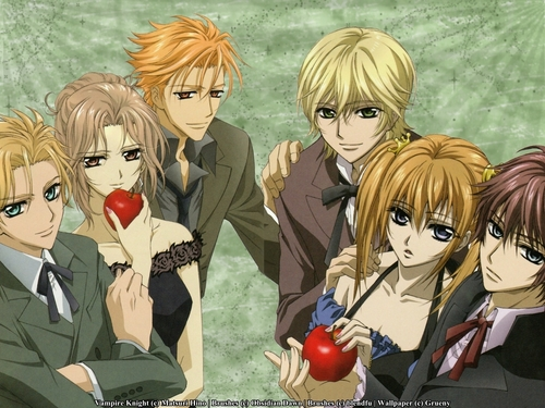 Vampire Knight karatasi la kupamba ukuta possibly with anime titled Vampire Knight