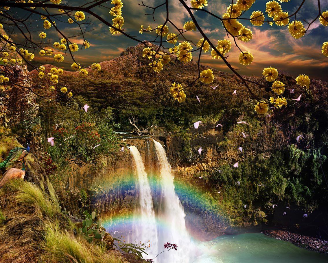 waterfall waterfalls nature fantasy beauty animals desktop birds hawaii wailua fanpop flowers wallpapers rainbows