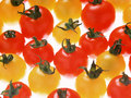 Wouldya look at dem tomatas - italian-food wallpaper