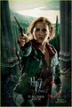 'Harry Potter & The Deathly Hallows Part II' Action Posters!