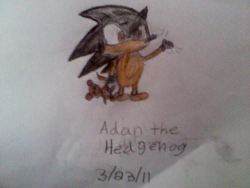 Adan the hedgehog