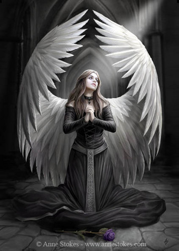 angel Anne Stokes