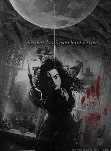 Bellatrix - DH pt.2