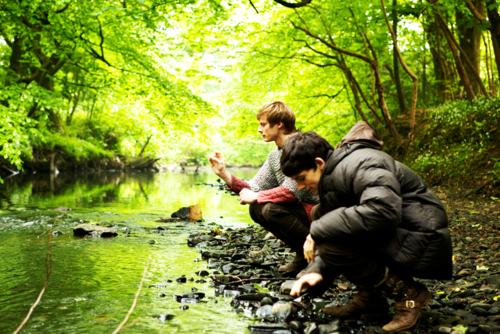 Bradley James wallpaper probably containing a beech, common duckweed, and a pondweed entitled Bradley