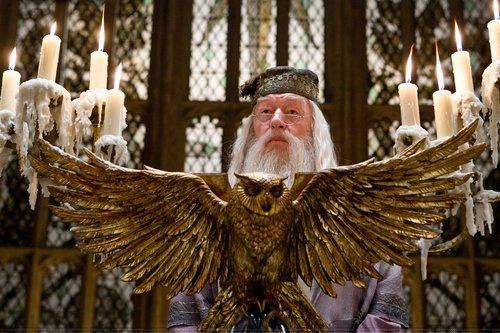 Dumbledore - Half Blood Prince
