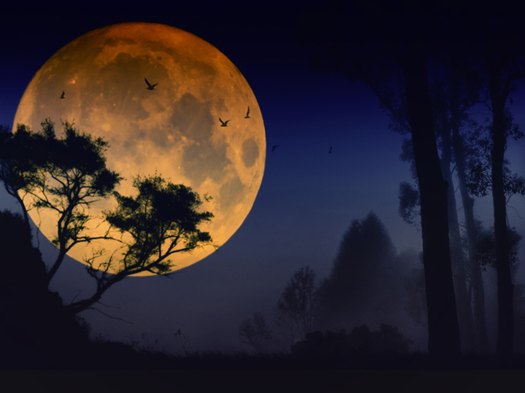 full moon moon wallpaper 22778636 fanpop