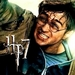 HP7 Harry Potter Icon