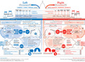 Left vs Right: US Political Spectrum - us-republican-party fan art