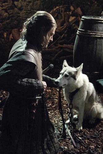 "Lord Eddard ""Ned"" Stark"