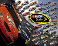 Nascar Sprint Series - nascar photo