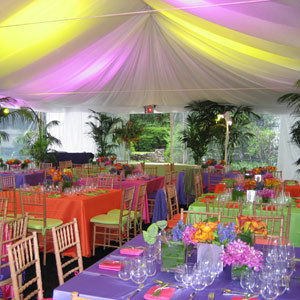 Now this is what a party looks like! - bright-colors Photo