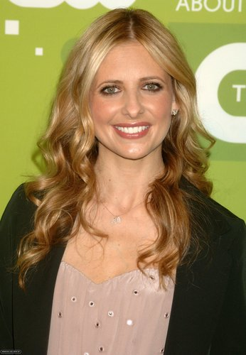 Sarah @ 2011 CW Upfronts