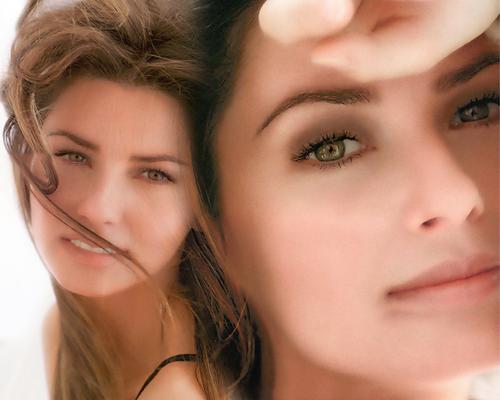 shania twain fondo de pantalla containing a portrait titled Shania Twain