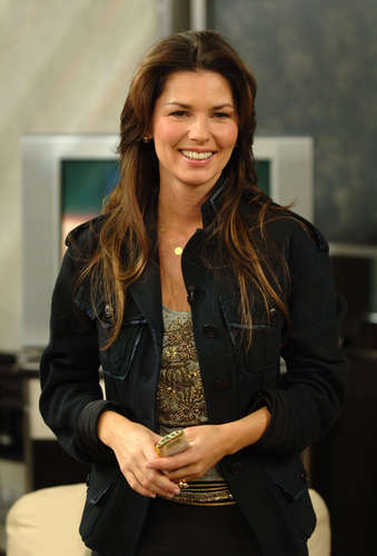 Shania Twain wallpaper with a well dressed person, a business suit, and an outerwear entitled Shania Twain