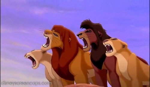Lion King Couples images Simba's Pride wallpaper and background photos