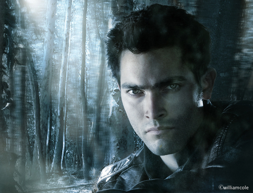 Tyler Hoechlin wallpaper probably containing a fontana entitled Teen lupo - Derek Hale
