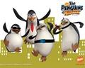 The Future Penguins! - fans-of-pom wallpaper