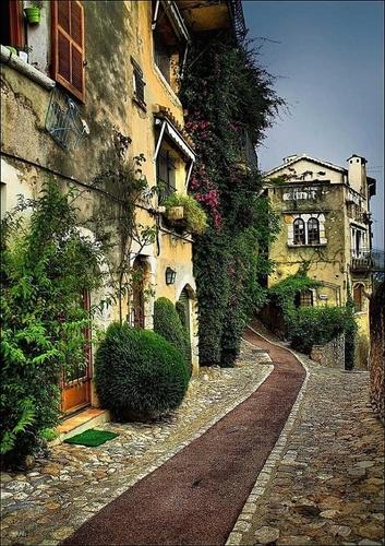Villas & Houses
