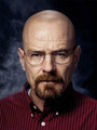 Walt - Breaking Bad Season 4 Promo