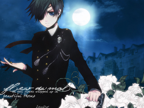 Ciel Phantomhive wolpeyper possibly containing a kalye called ciel Phantomhive