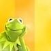 kerm - kermit-the-frog icon