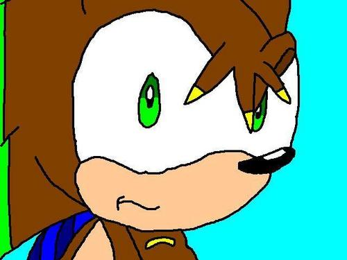 rush the hedgehog
