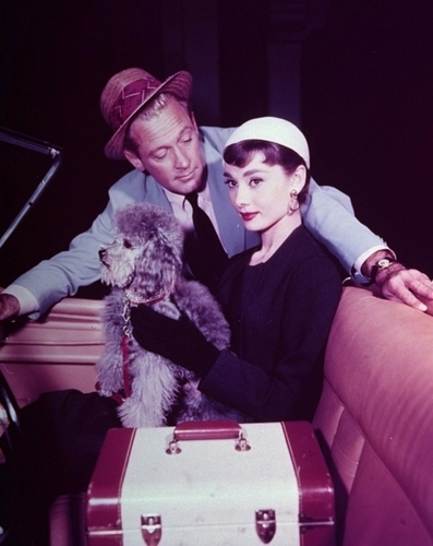 Audrey Hepburn wallpaper called Audrey Hepburn with William Holden , Sabrina 1954