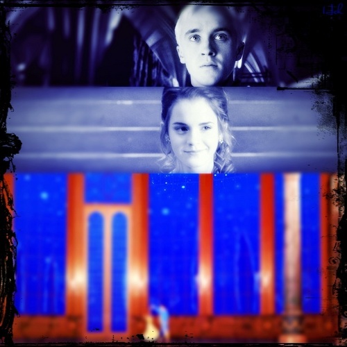 Beauty and the Beast- Dr/H - dramione Photo