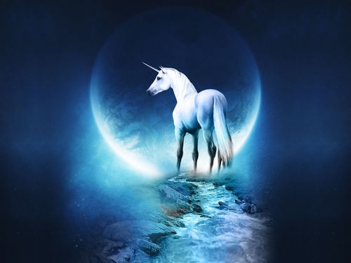 Chase's unicorn dream of night