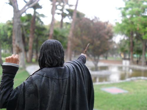 My Severus Snape figure