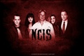 NCIS Team - ncis fan art