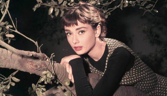 Audrey Hepburn images SABRINA wallpaper and background ...