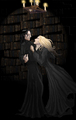 Severus and Narcissa (Specially for WEloveHARRY) - harry-potter-combinations photo