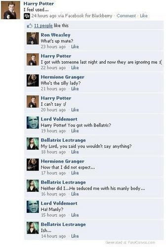 Harry Potter Vs. Twilight wallpaper called Twilight and Harry Potter Facebook Conversations!