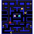 mrs.pacman - pac-man photo